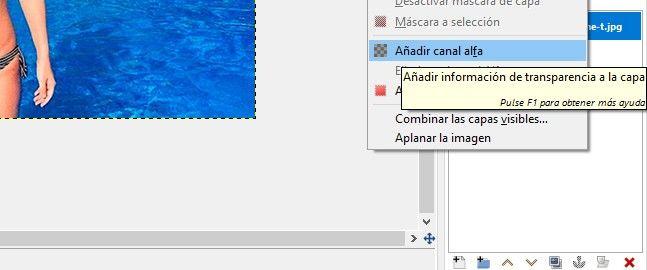 añadir canal alfa en GIMP