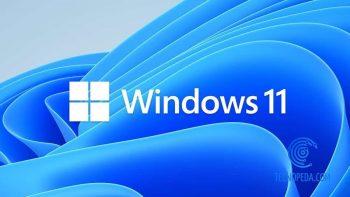 Wallpaper de Windows11
